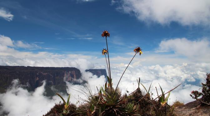 Hledání ztracených dinosaurů ve ztraceném světě – Roraima, Venezuela