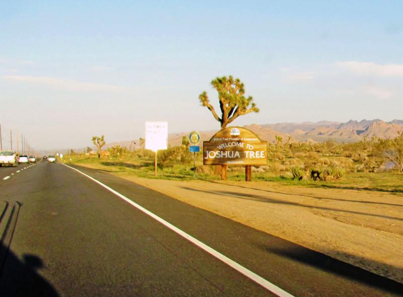 Joshua Tree je národním parkem Kalifornie teprve od roku 1994. Při jeho návštěvě dbejte pokynů místních rangerů a nezapomínejte, jak se v národních parcích chovat