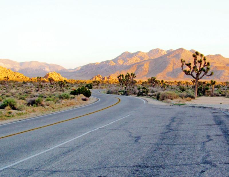 Park leží kousek od města Palm Springs a vede jím několik asfaltových cest, které propojují nezajímavější místa a vyhlídky