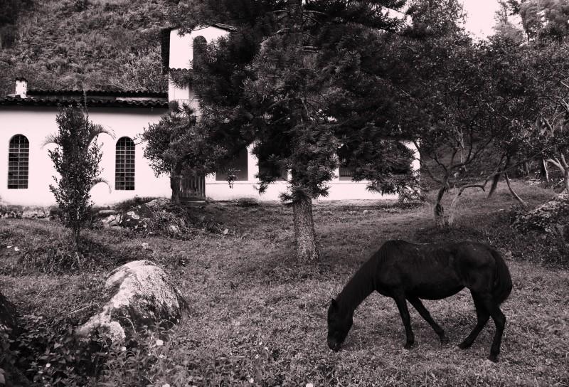 05-V-zajeti-magickeho-realismu.Nejkrasnejsi- kolumbijska-vesnice-Concepcion-konik-u-opustene-farmy