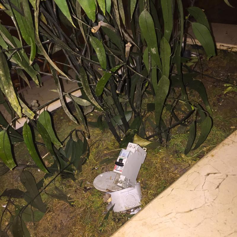 V Tunisku se daří pěstování snad úplně všeho! Tady nějaký kutil zasadil elektrikářskou krabici a sledujte, jaký mu vyrostl krásný jistič!
