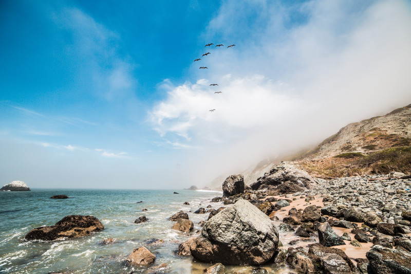 Odškodnění za zpožděný let – ptáci nad pobřežím moře.