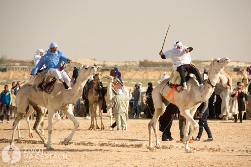 Fotoreport z cesty napříč Tuniskem – Závody na velbloudech jsou zajímavá podívaná.