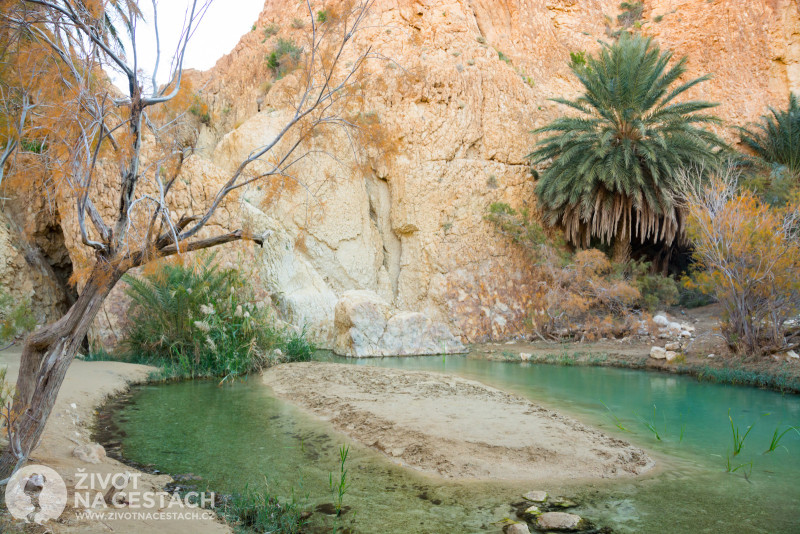Fotoreport z cesty napříč Tuniskem – Laguna dole v oáze Chebika.