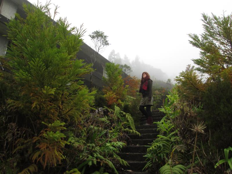 Venkovní schodiště Monte Palace zarostlé vegetací
