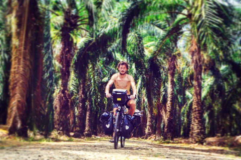 Jízda nádherným palmovým hájem v Kostarice.