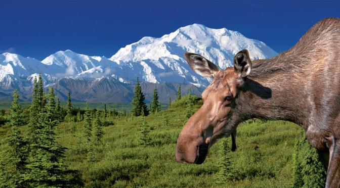 Cestovatel a fotograf Martin Loew uvádí diashow turné Aljaška – divočina zlatého severu