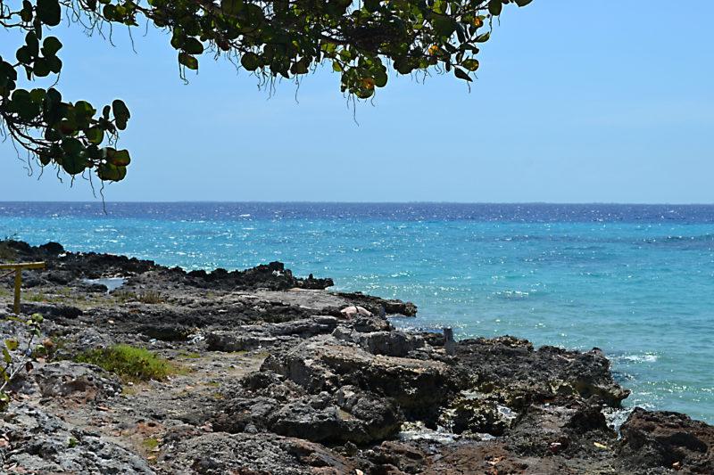 Koupání v Karibiku II.