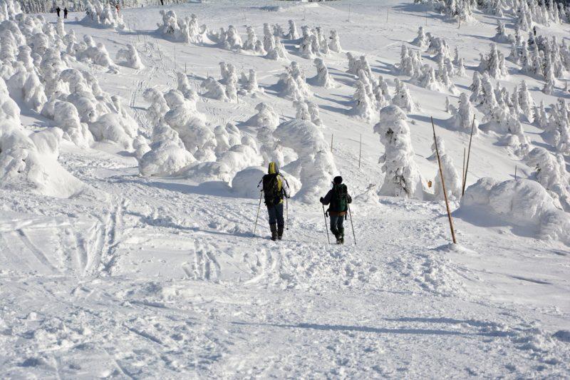 Cestou z Králického Sněžníku