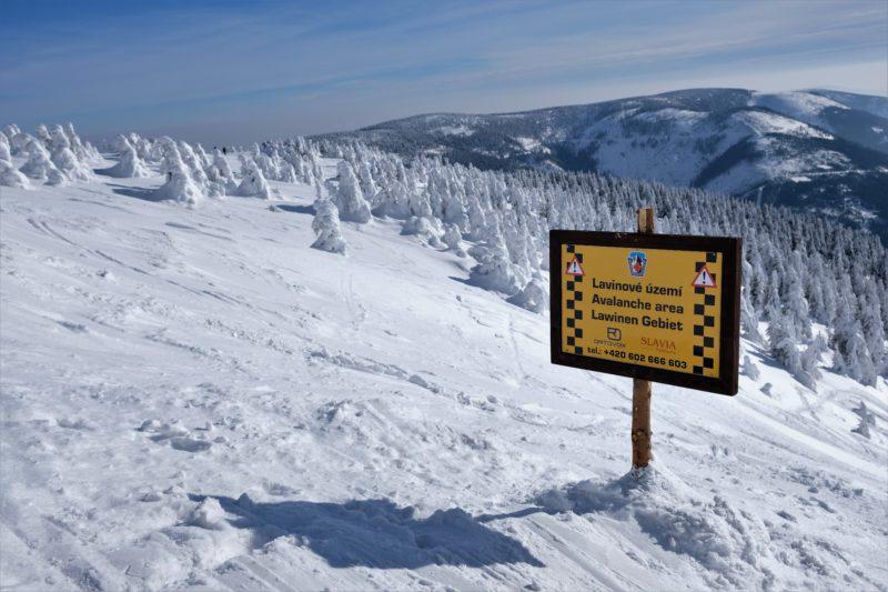 Cestou na vrchol míjíme i lavinové území.