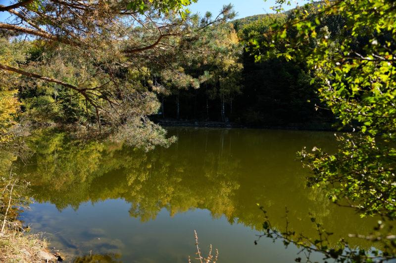 Bojanské jezero, tedy spíše jezírko