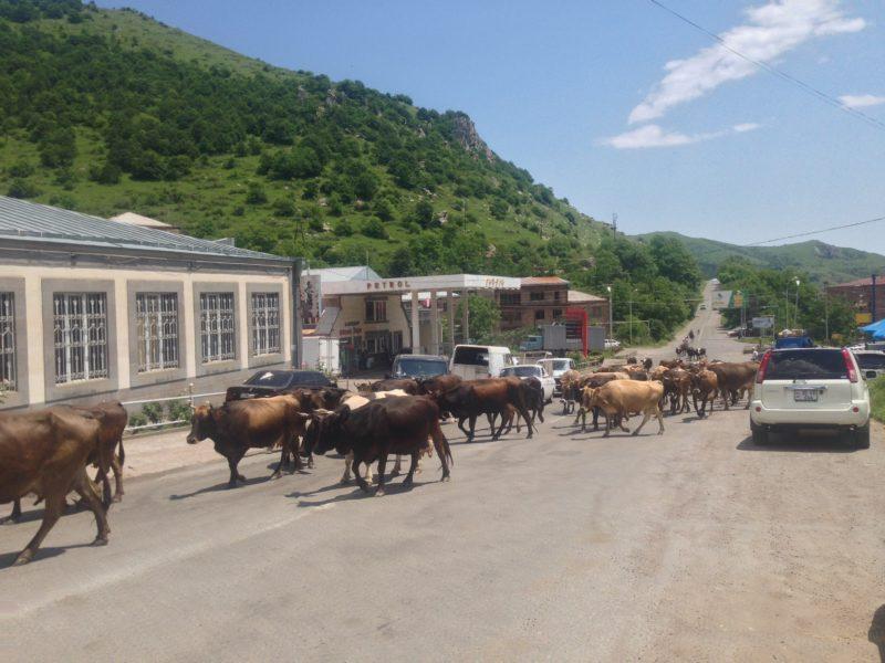 Dopravní situace u Tateva